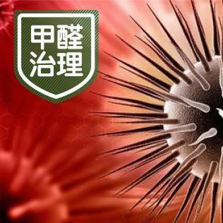 上海亚博体育官网地址公司-甲醛治理