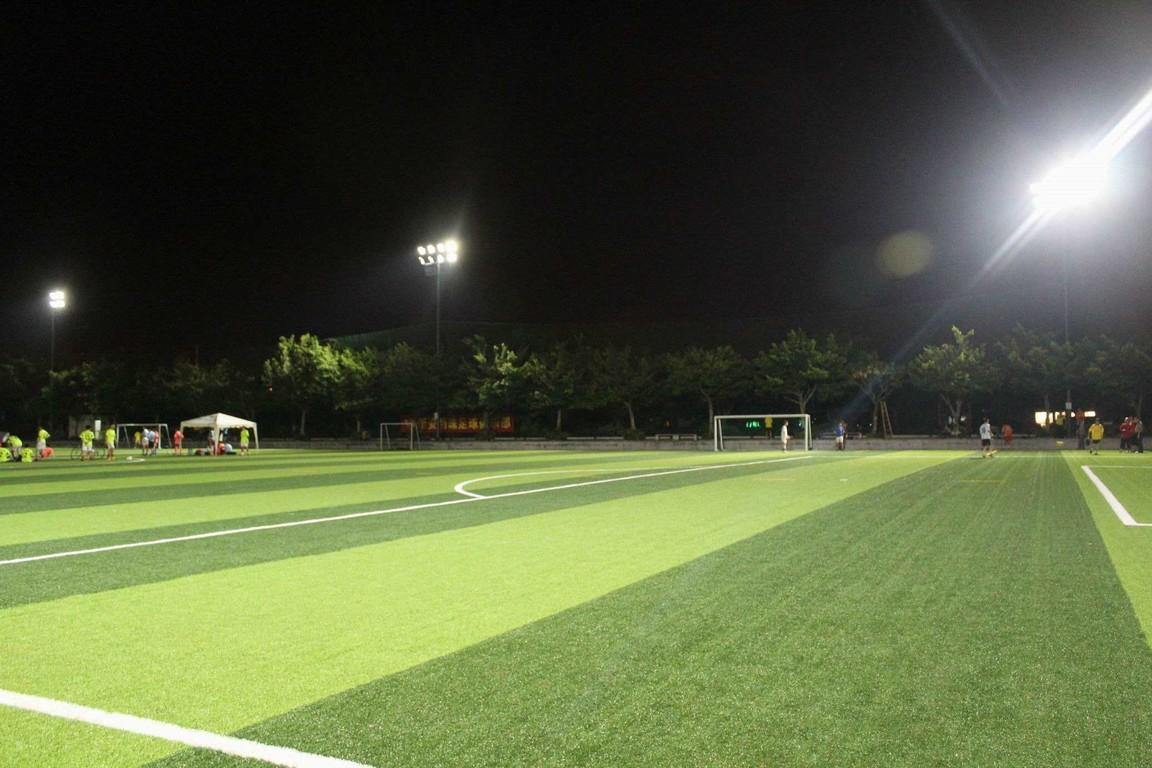 成都武侯区水韵天府足球场、EPDM塑胶项目设计施工工程