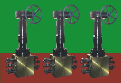 螺栓连接抗氢钢阀门