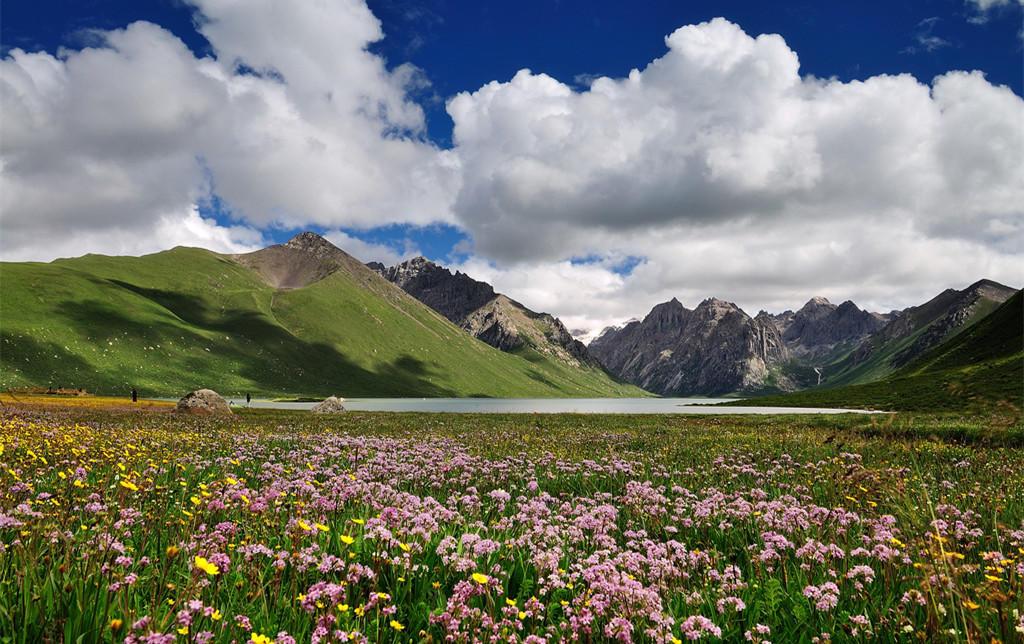 西藏的夏季