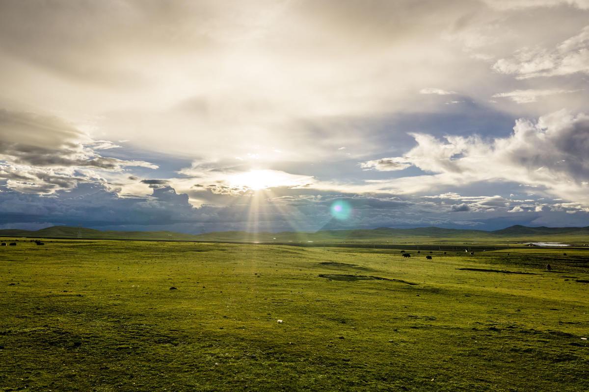 羌塘大草原