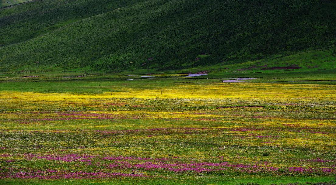 夏季川藏線自駕游攻略