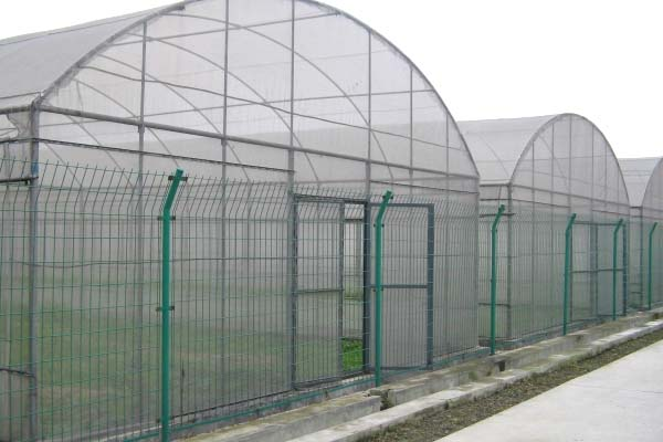 film greenhouse