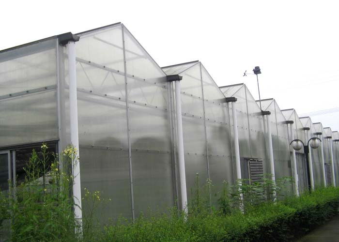 Polycarbonate (PC) Sheet Greenhouse for Eco-Restaurant
