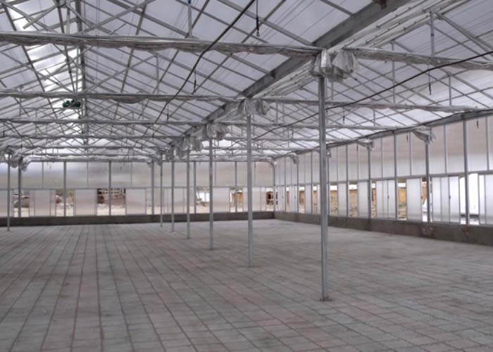 Polycarbonate Greenhouse With Auto System