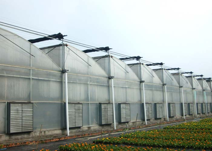 Vegetable PC Greenhouse