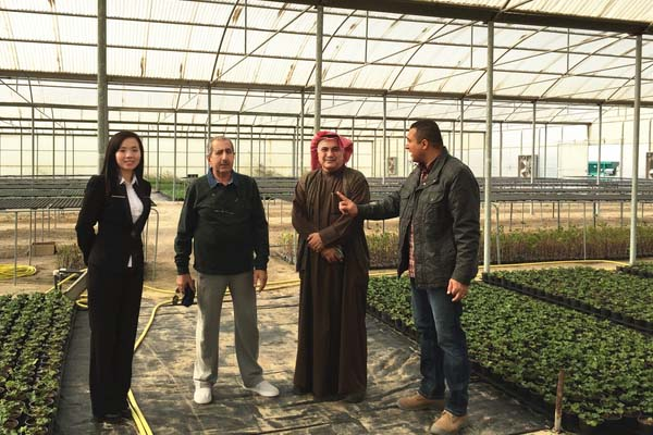 Customer Visiting Scientific Research Greenhouse