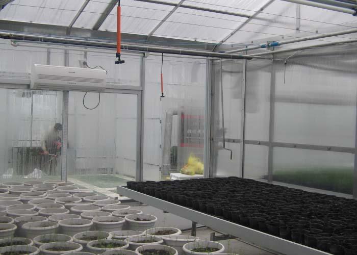 Scientific Research Greenhouse(inside)