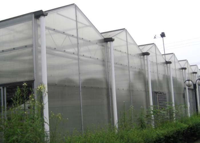 Vegetable PC Greenhouse