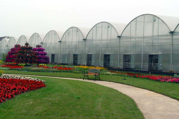 Flower Greenhouse(outside)