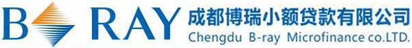 成都博瑞小额贷款有限公司官方网站