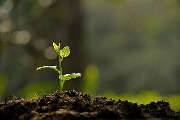 环保行业释放并扩大市场需求